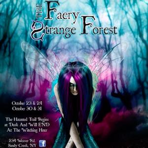 Faery Strange Forest Sponsor Logo